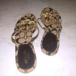 Brown Coach Flower Designer Sandals